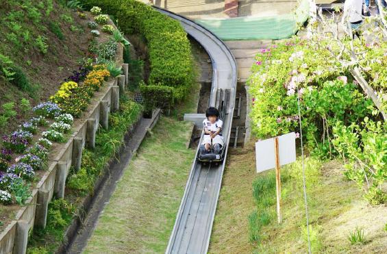 茨城県フラワーパークとイチゴ狩り