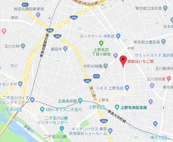 世田谷いちご熟の地図