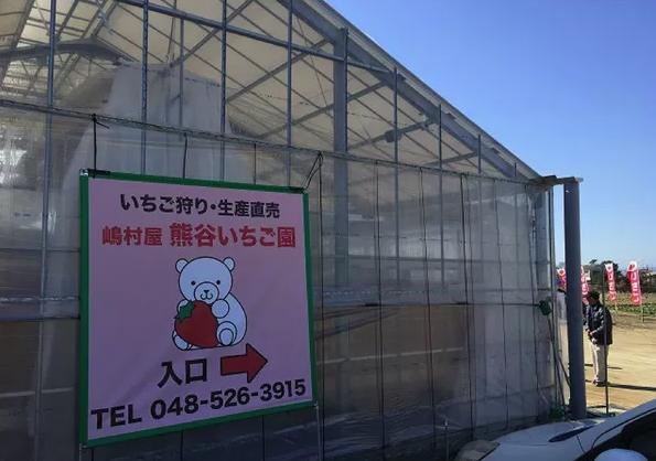 熊谷いちご園のイチゴ狩り