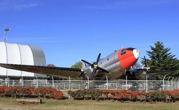 所沢航空記念公園イチゴ狩り立ち寄りスポット