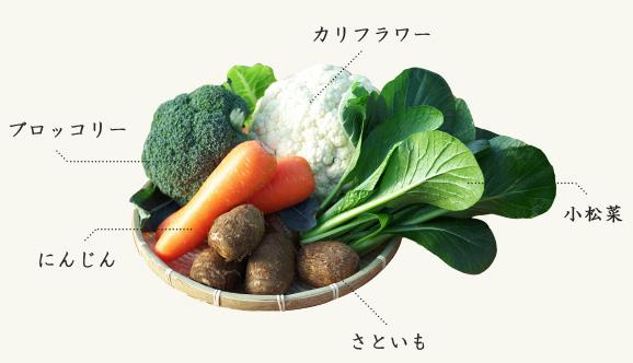 所沢北田農園 苺のマルシェのお土産